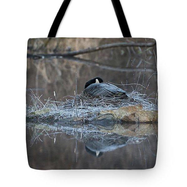 Taking A Rest Tote Bag