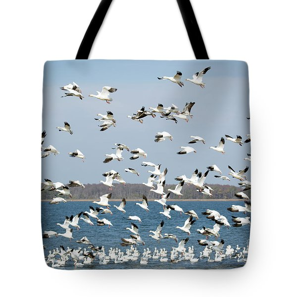 Taking Flight IIi Tote Bag