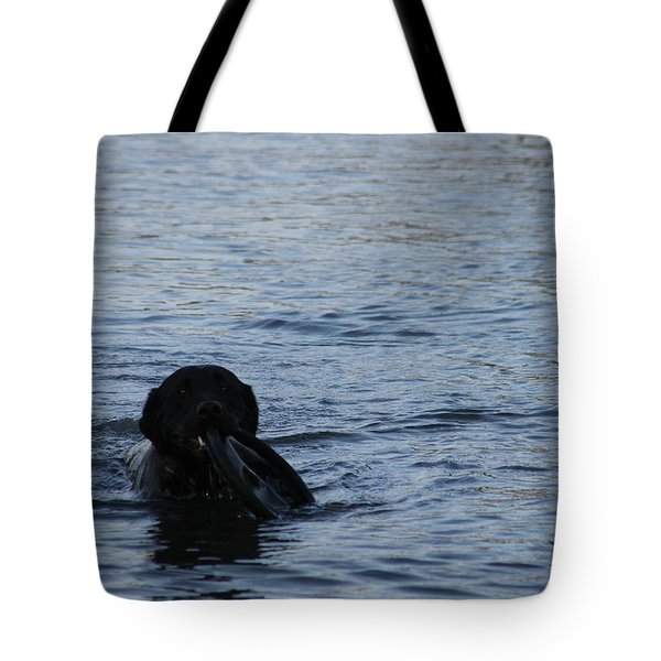 Taking Frisbee For A Swim Tote Bag by Robert Banach