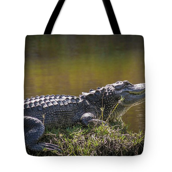 Taking In The Sun Tote Bag