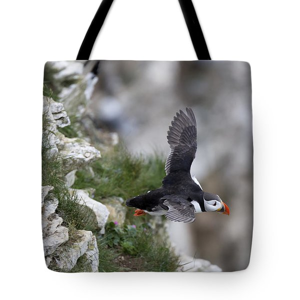 Taking Off Tote Bag by David  Hollingworth