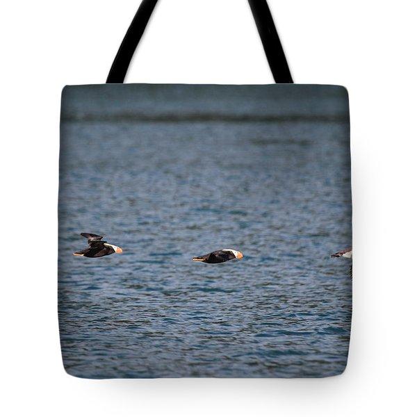 Taking Terns Tote Bag