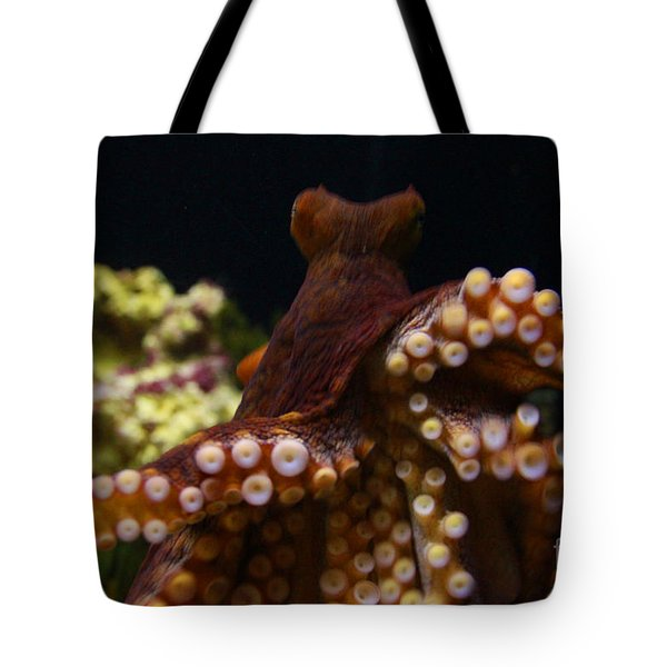 Tako Not Taco Hawaiian Octopus Tote Bag