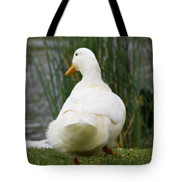 Tote Bag featuring the photograph Tale Feathers by Tara Lynn