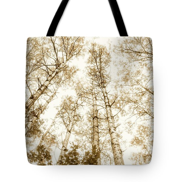 Tote Bag featuring the photograph Tall Aspens by Elena Elisseeva