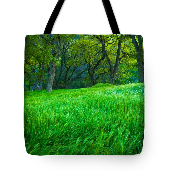 Tall Grass At Twilight Tote Bag