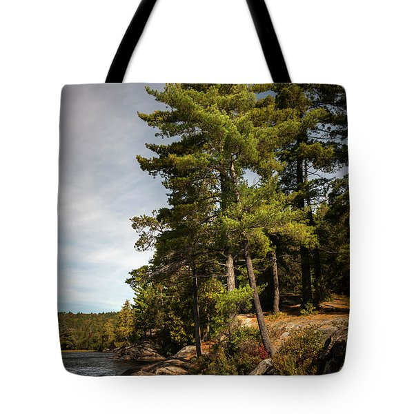 Tote Bag featuring the photograph Tall Pines On Lake Shore by Elena Elisseeva