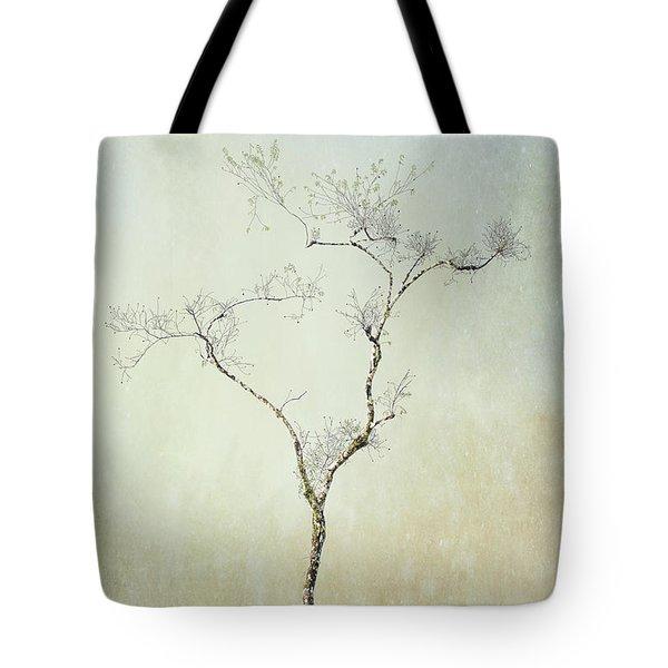 Tall Tree Tote Bag