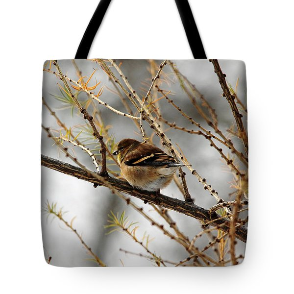 Tamarack Visitor Tote Bag