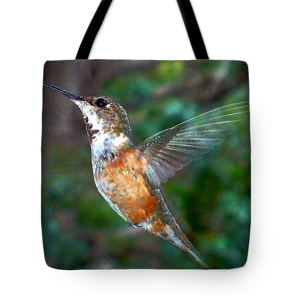 Tan Hummingbird Tote Bag by Joseph Frank Baraba