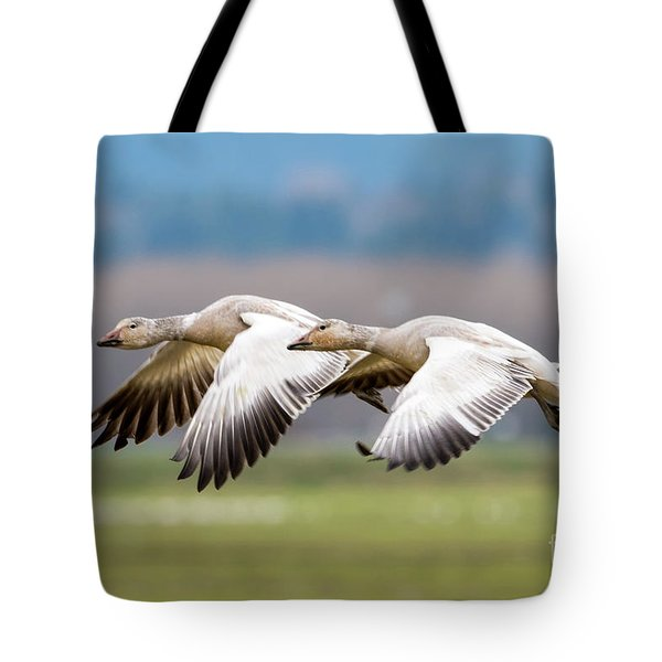 Tote Bag featuring the photograph Tandem Glide by Mike Dawson