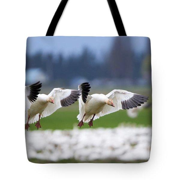 Tandem Landing  Tote Bag