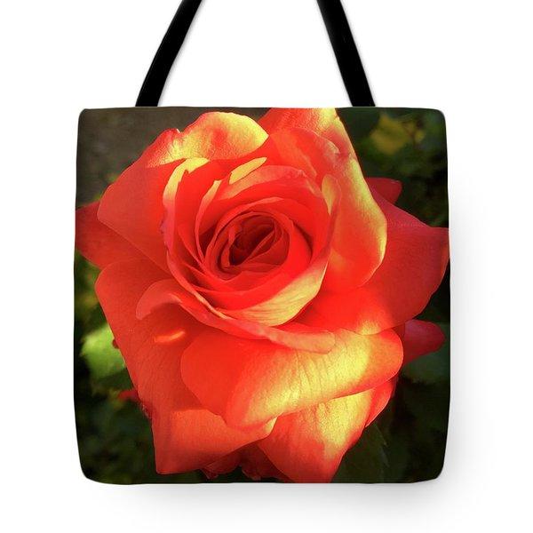 Tangerine Dream Tote Bag by Russell Keating