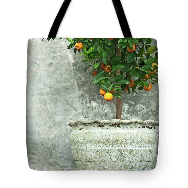 Tangerine Tree In Old Clay Pot Tote Bag