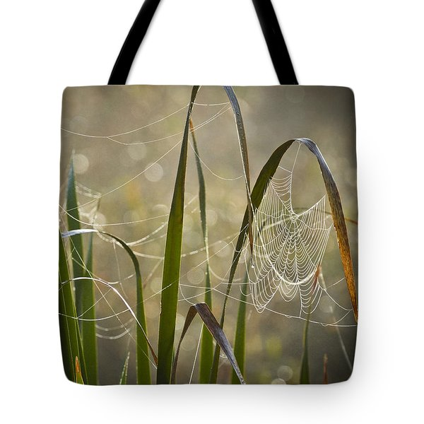Tangled Highway Tote Bag by Carolyn Marshall