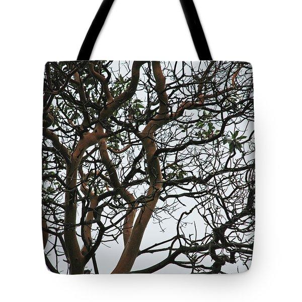 Tangled Web Tree Tote Bag by Carol  Eliassen