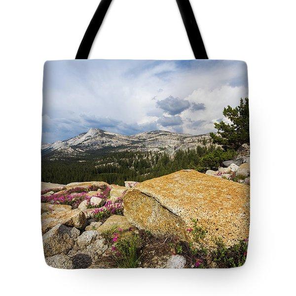 Tanya Overlook  Tote Bag