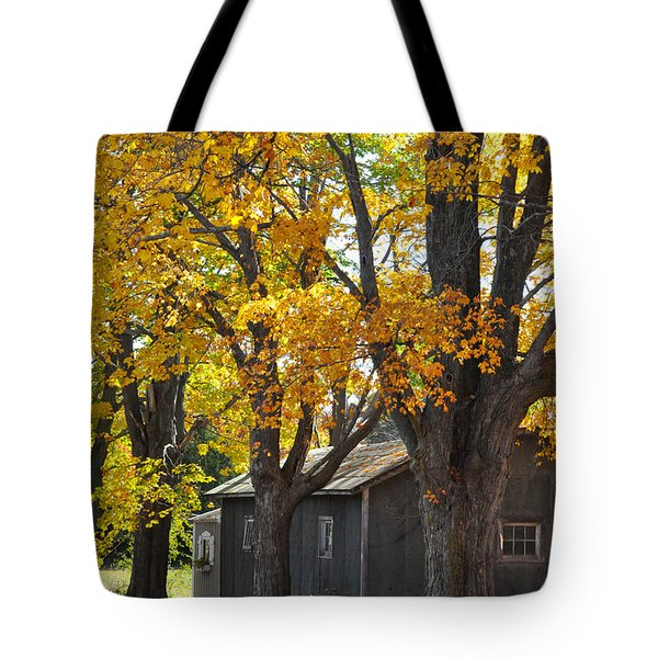 Tar Paper Shack Tote Bag by Tim Nyberg