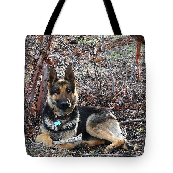 Tote Bag featuring the photograph Tara by Julia Ivanovna Willhite