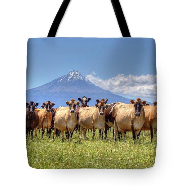 Taranaki Cows Tote Bag