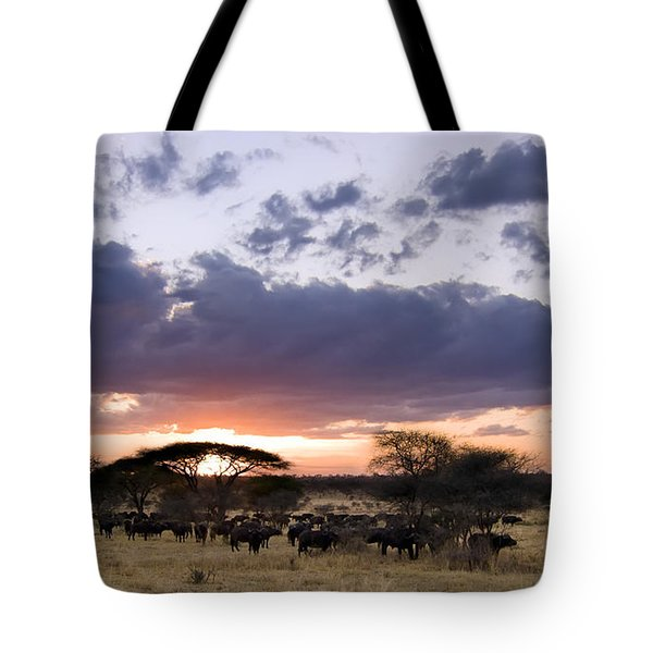 Tarangire Sunset Tote Bag by Adam Romanowicz