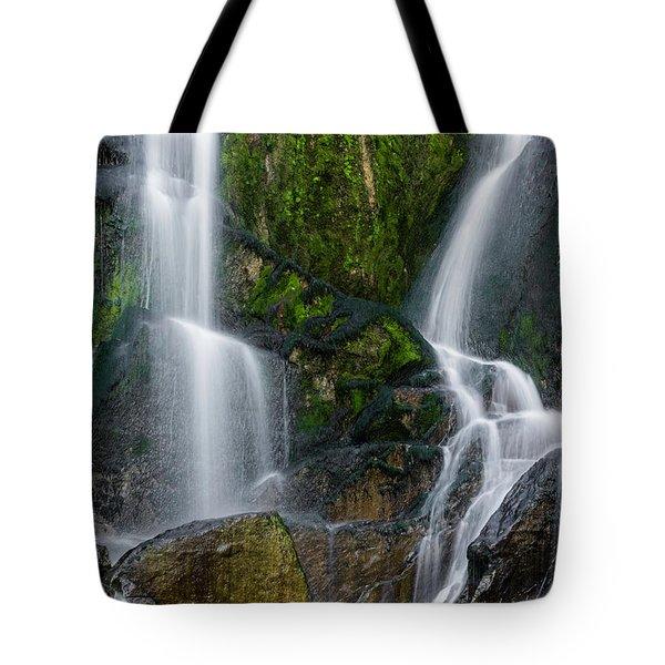 Tarcento's Cascade Tote Bag