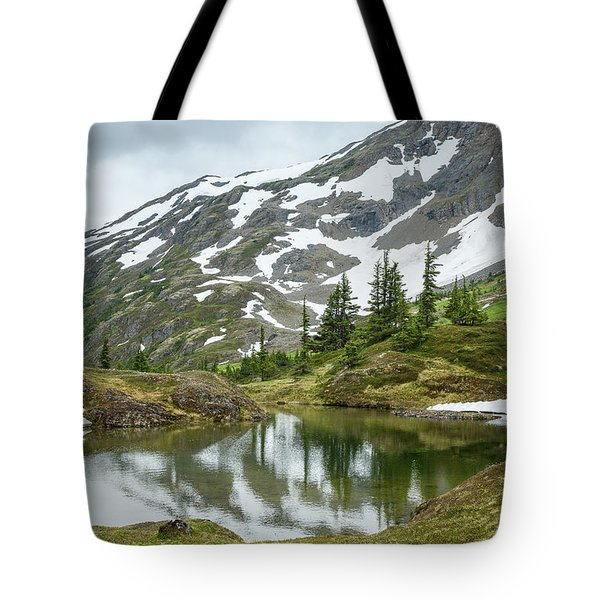 Tote Bag featuring the photograph Tarns Of Nagoon 209 by Tim Newton