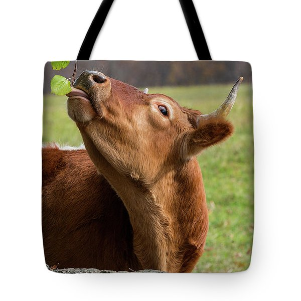 Tote Bag featuring the photograph Tasty by Bill Wakeley
