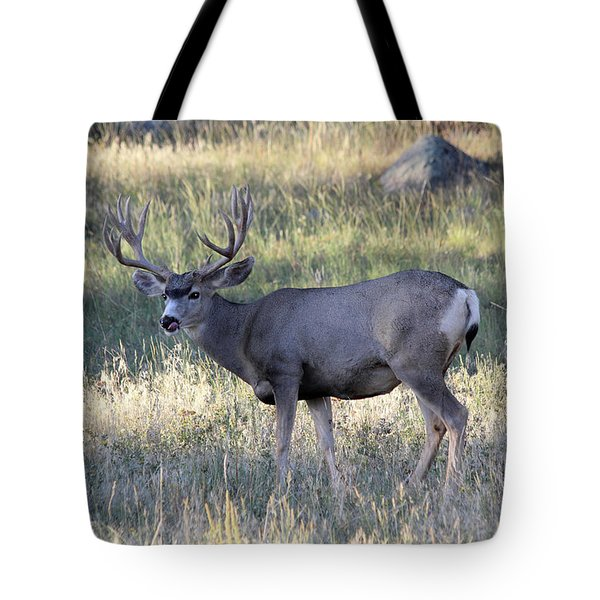 Tote Bag featuring the photograph Tasty by Shane Bechler