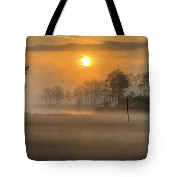 Tote Bag featuring the photograph Tate's Hell State Forest by JC Findley