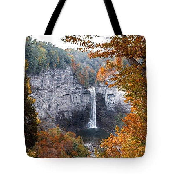 Taughannock Autumn Tote Bag