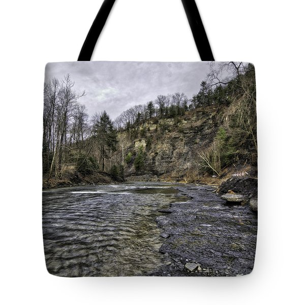 Taughannock Creek Tote Bag