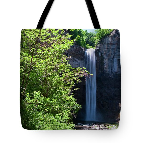 Taughannock Falls 0466 Tote Bag by Guy Whiteley