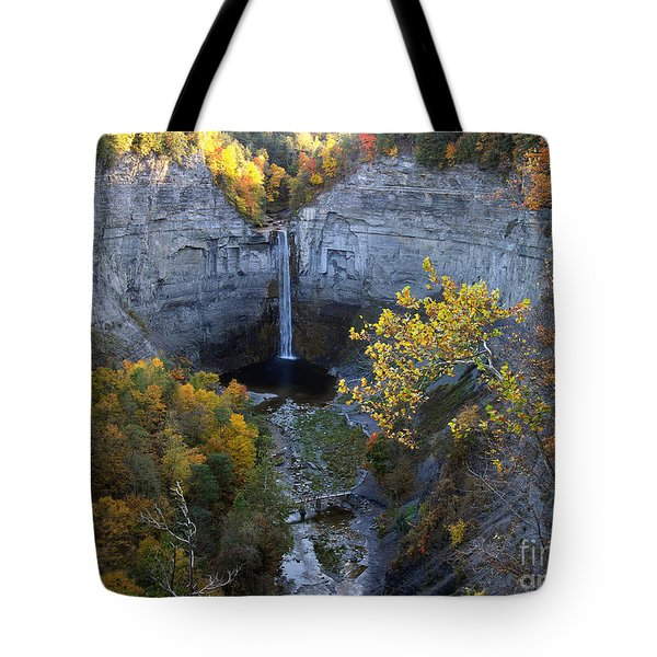 Tote Bag featuring the photograph Taughannock Falls by Vilas Malankar