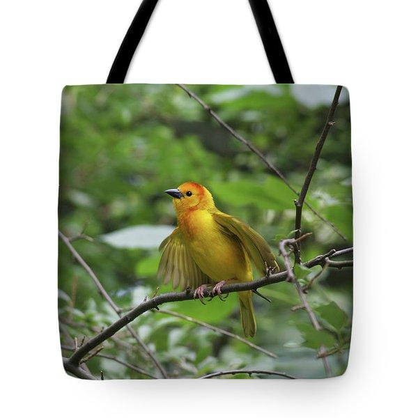 Taveta Golden Weaver #3 Tote Bag