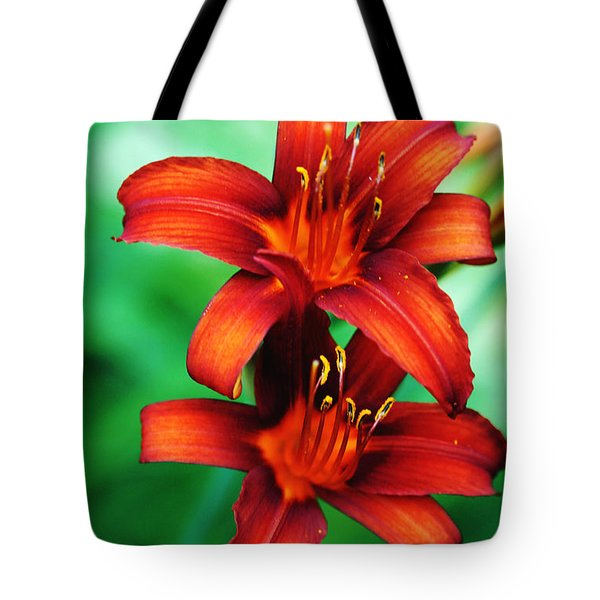 Tawny Beauty Tote Bag