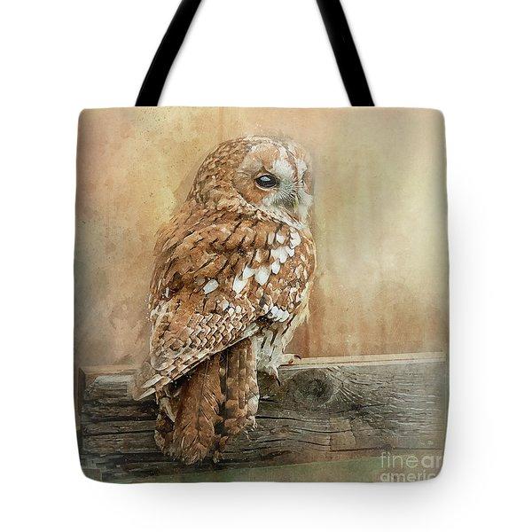 Tawny Owl Tote Bag