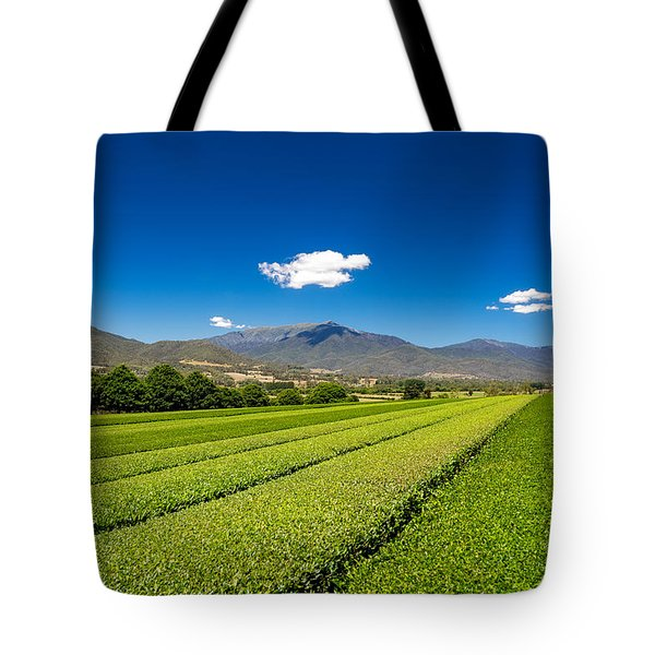 Tea In The Valley Tote Bag by Mark Lucey