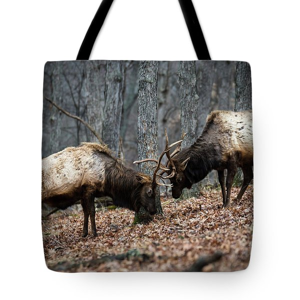 Tote Bag featuring the photograph Teaching by Andrea Silies
