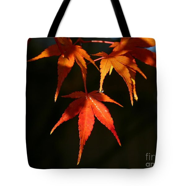 Tearful Farewell Tote Bag