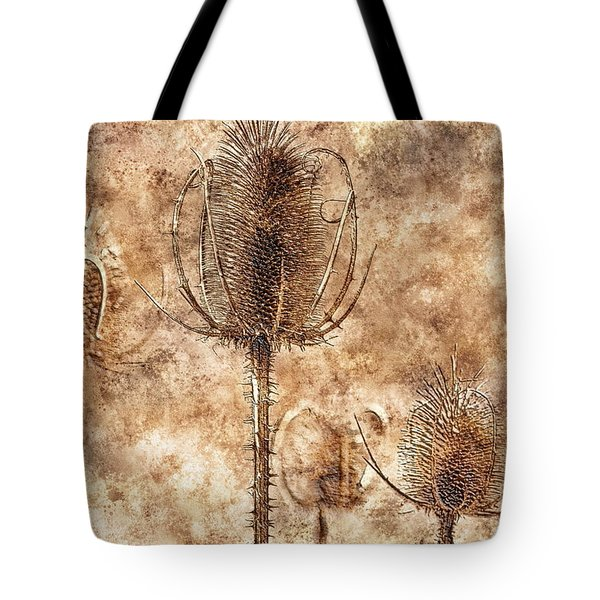 Tote Bag featuring the photograph Teasel Heads  by Dariusz Gudowicz
