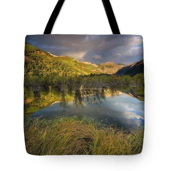 Telluride Valley Floor Tote Bag