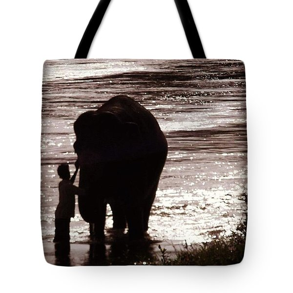 Temple Elephant Being Bathed Down At Tote Bag