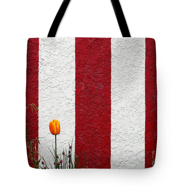 Tote Bag featuring the photograph Temple Wall by Ethna Gillespie