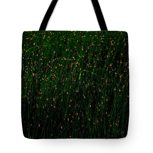 Ten Thousand Fire Flies Tote Bag by Ed Smith