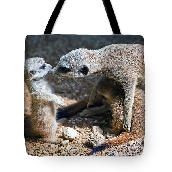 Tender Care Tote Bag by Bill  Robinson
