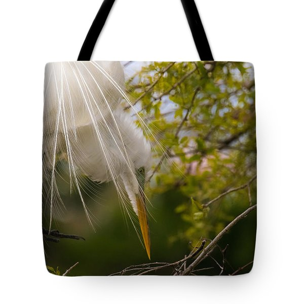 Tending To The Nest Tote Bag by Kelly Marquardt