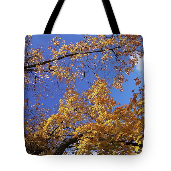 Tennessee Tree 1 Tote Bag by Jeanne Forsythe