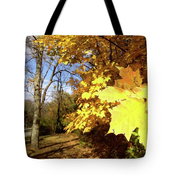 Tennessee Trees 2 Tote Bag