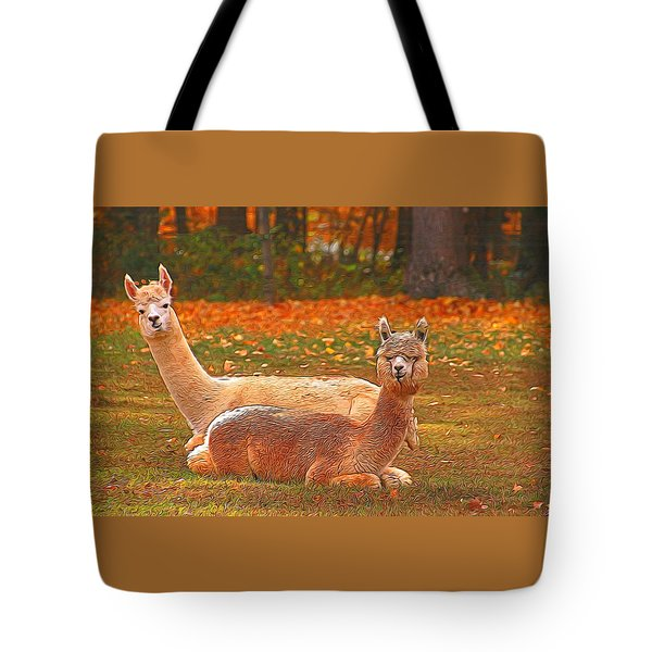 Teribus And Major Tote Bag by Allen Beatty